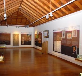 museopuropalmero3