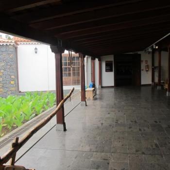 museopuropalmero5